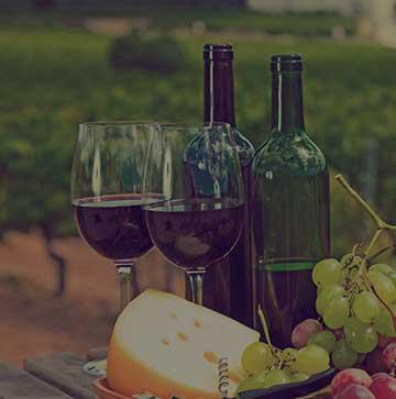 Vin rouge bio de la Vallée du Rhône